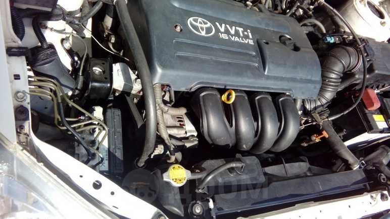Toyota Corolla Runx, 2003 год, 315 000 руб.