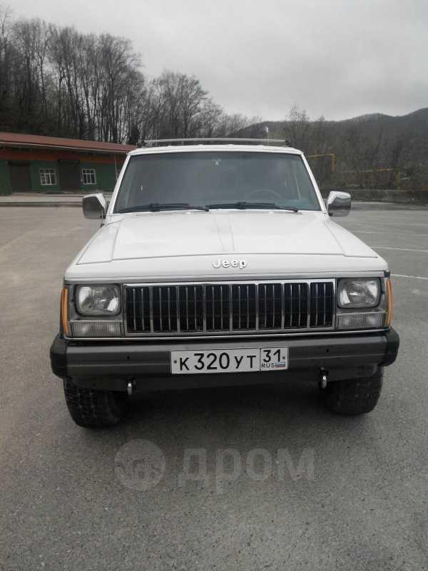 Jeep Cherokee, 1989 год, 200 000 руб.