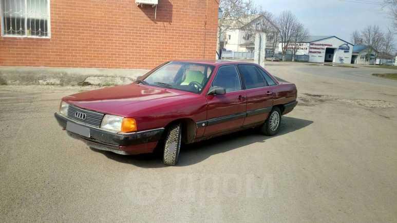 Audi 100, 1988 год, 83 000 руб.