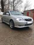 Toyota Allex, 2002 год, 390 000 руб.