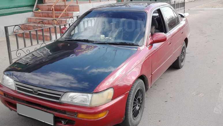 Toyota Corolla, 1993 год, 149 000 руб.