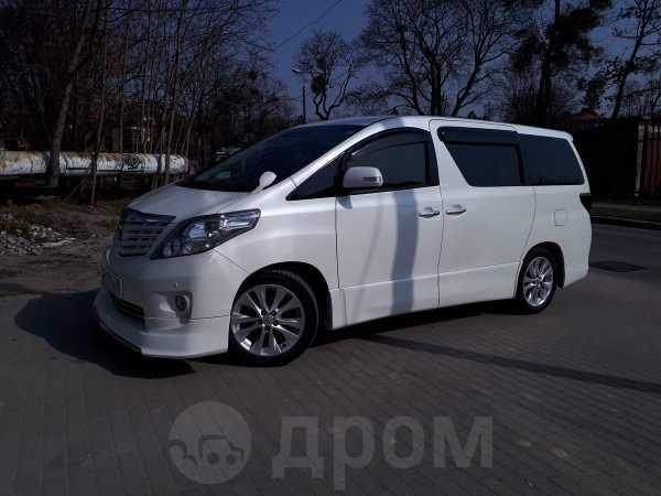 Toyota Alphard, 2010 год, 1 500 000 руб.