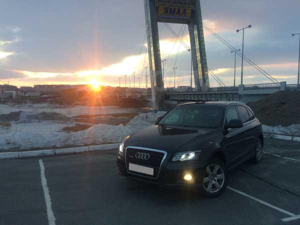 Audi Q5, 2009 год, 790 000 руб.