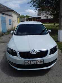 Верхнерусское Octavia 2016