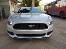 Краснодар Mustang 2016