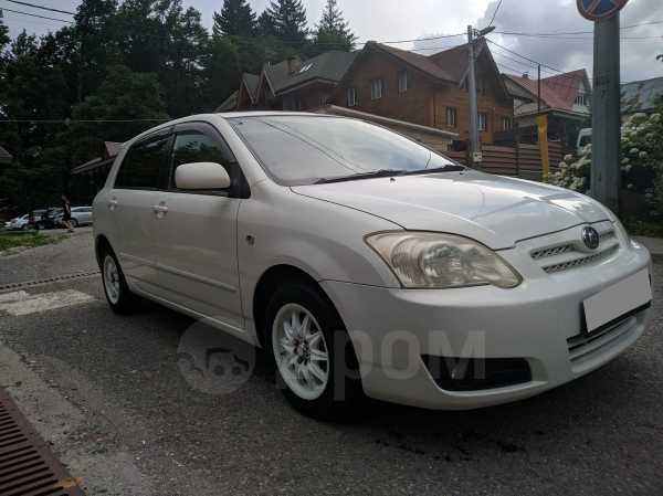 Toyota Allex, 2004 год, 365 000 руб.