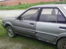 Криводановка Langley 1987