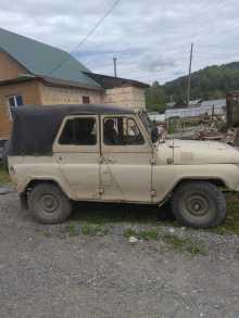 Горно-Алтайск 3151 1990
