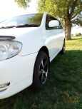 Toyota Corolla Fielder, 2002 год, 325 000 руб.