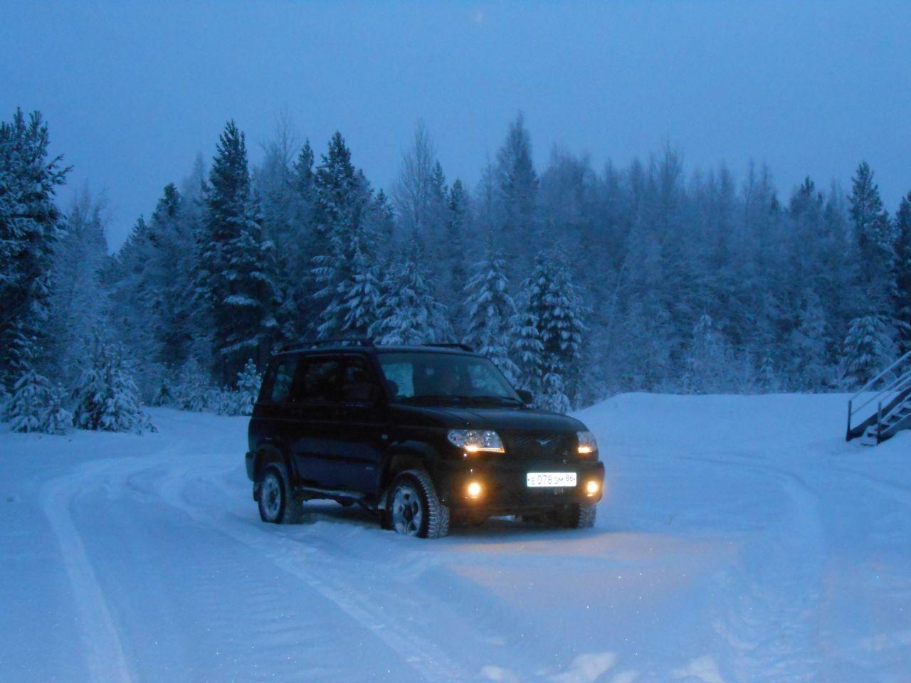 Зимний лес...
