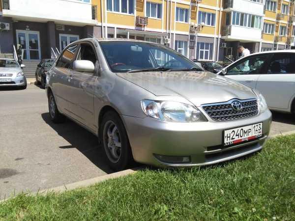 Toyota Corolla, 2002 год, 280 000 руб.