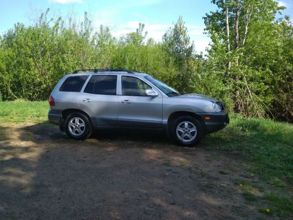 Hyundai Santa Fe Classic, 2002 год, 310 000 руб.
