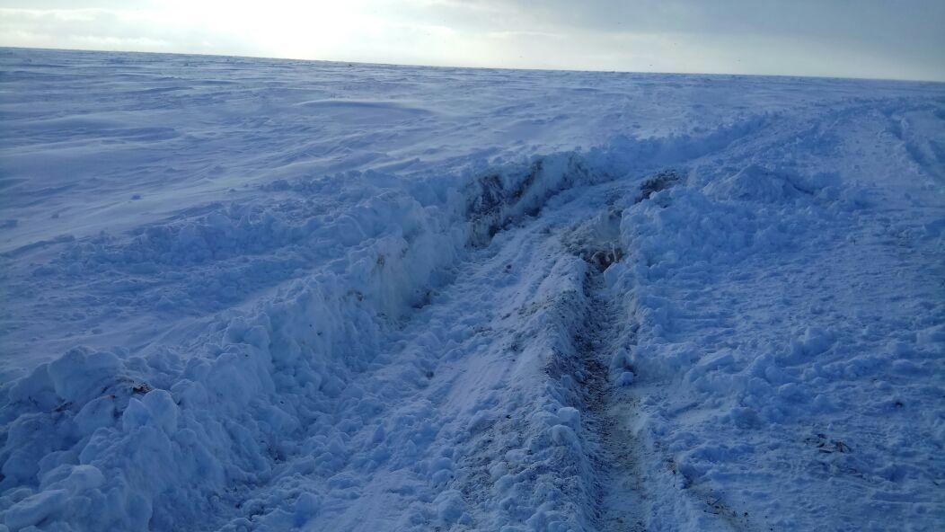 По таким снегам, с небольшой помощью лопаты - идет нормально