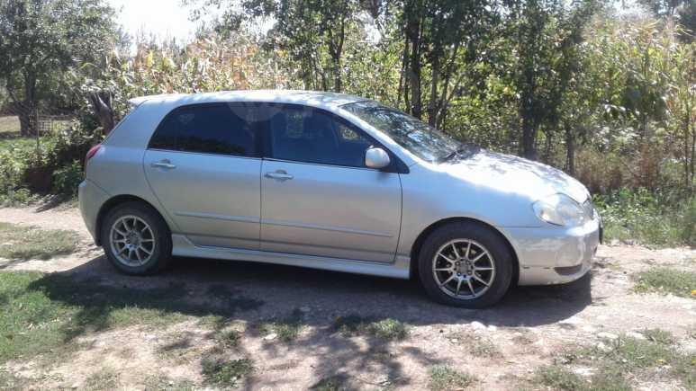 Toyota Allex, 2001 год, 220 000 руб.