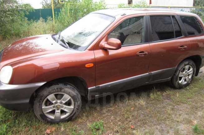 Hyundai Santa Fe Classic, 2001 год, 350 000 руб.