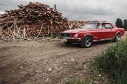 Екатеринбург Mustang 1968