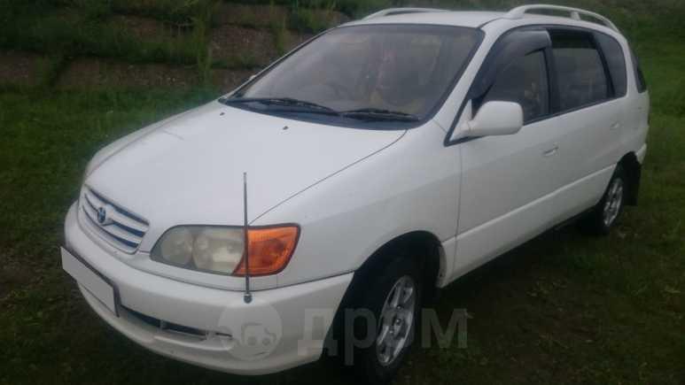 Toyota Ipsum, 1991 год, 350 000 руб.