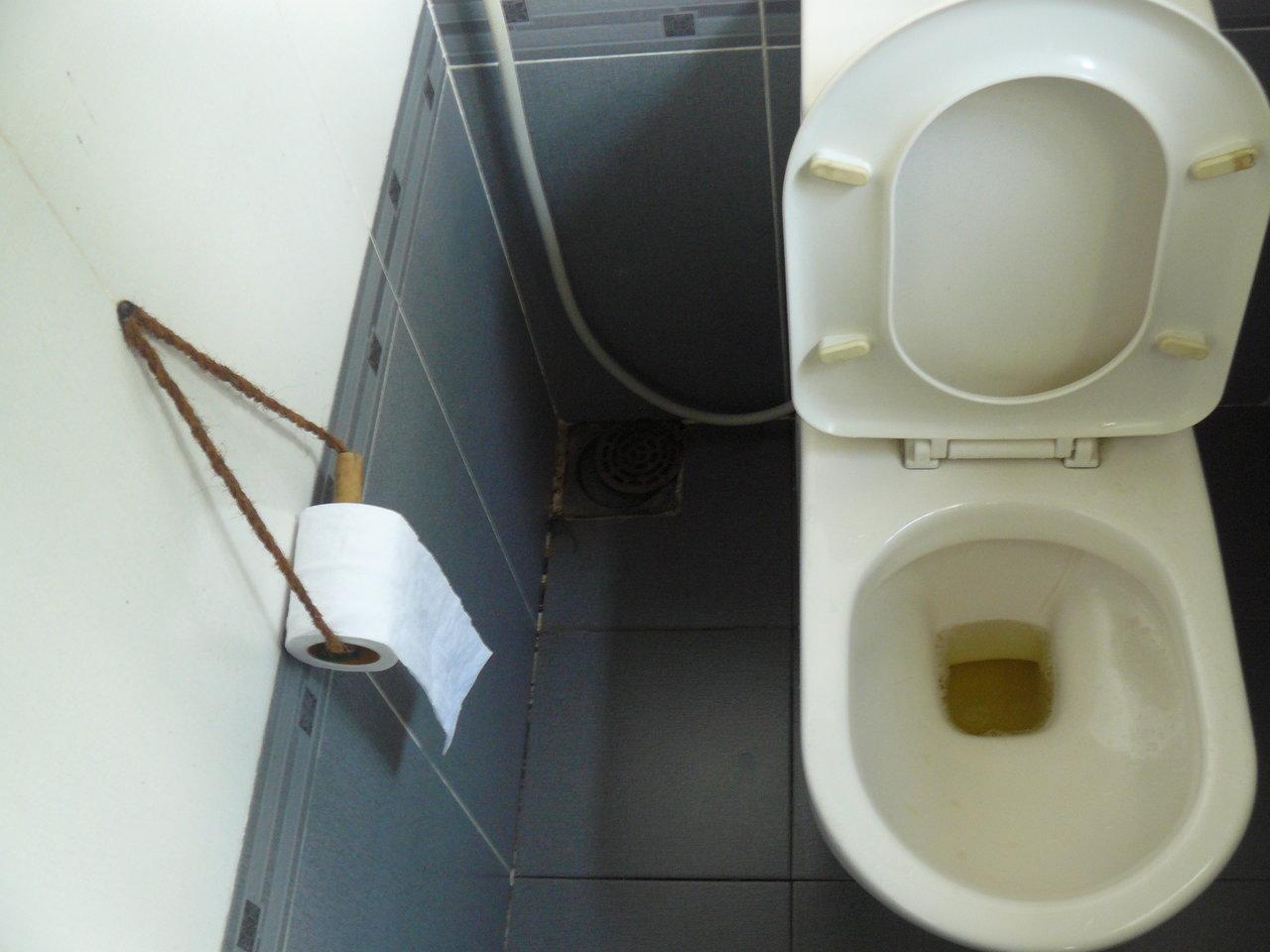 Из головы раба сделали туалет