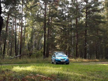 Honda Fit 2010 - отзыв владельца