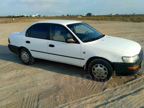 Toyota Corolla, 1993 год, 95 000 руб.