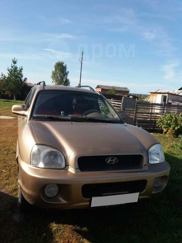 Hyundai Santa Fe, 2003 год, 357 000 руб.