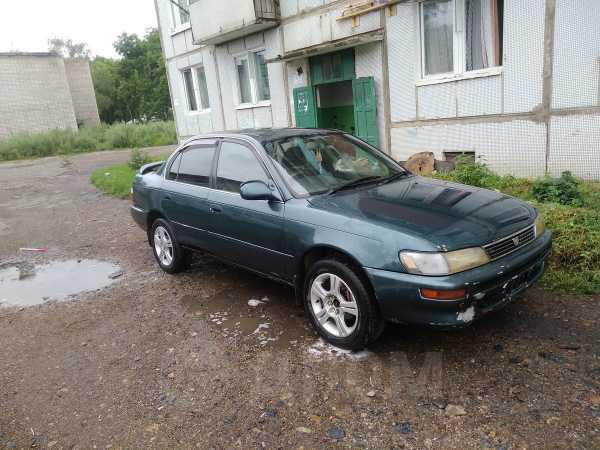 Toyota Corolla, 1994 год, 40 000 руб.