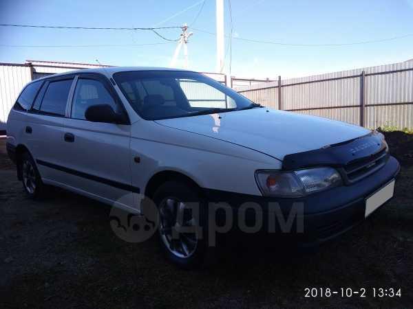 Toyota Caldina, 2002 год, 245 000 руб.