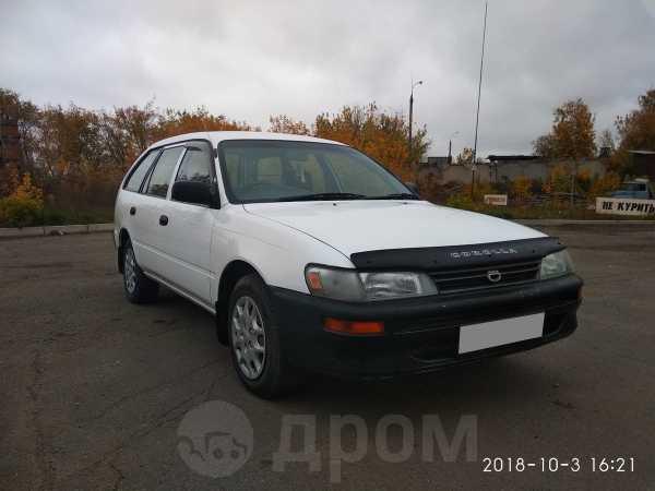 Toyota Corolla, 2001 год, 235 000 руб.