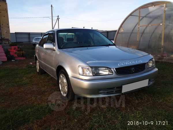 Toyota Corolla, 1999 год, 245 000 руб.