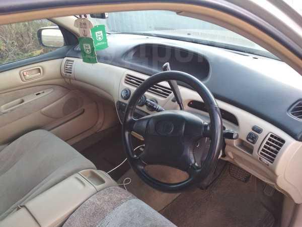 Toyota Vista, 1999 год, 175 000 руб.