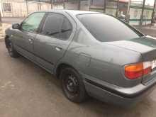 Краснодар Primera 2000