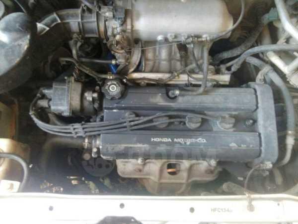 Honda Stepwgn, 1999 год, 175 000 руб.