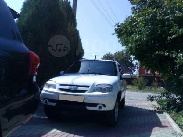 Chevrolet Niva, 2013 год, 490 000 руб.