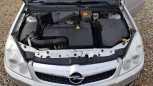 Opel Vectra, 2006 год, 334 000 руб.