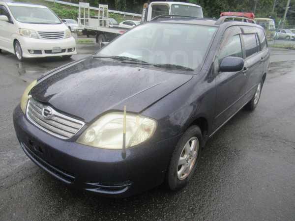 Toyota Corolla Fielder, 2003 год, 249 000 руб.