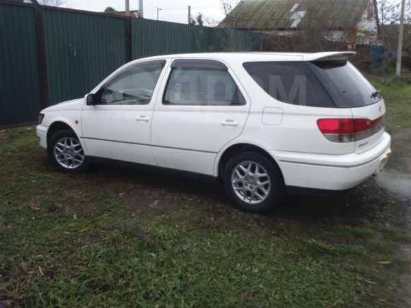 Toyota Vista Ardeo, 1998 год, 227 000 руб.