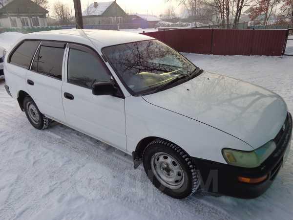 Toyota Corolla, 1999 год, 217 000 руб.