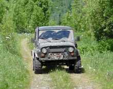 Междуреченск 3151 2013