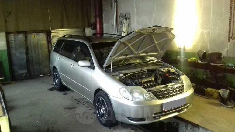 Toyota Corolla Fielder, 2001 год, 320 000 руб.