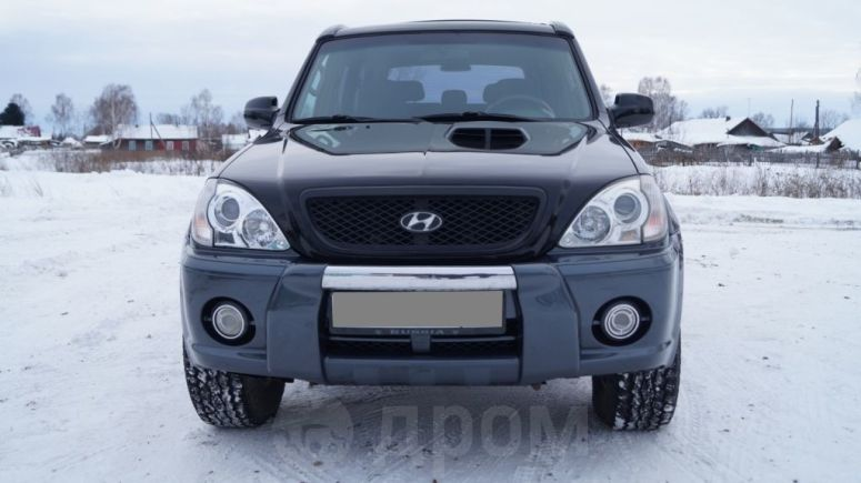 Hyundai Terracan, 2003 год, 460 000 руб.