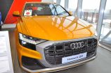 Audi Q8. ОРАНЖЕВЫЙ, МЕТАЛЛИК (DRAGON ORANGE)