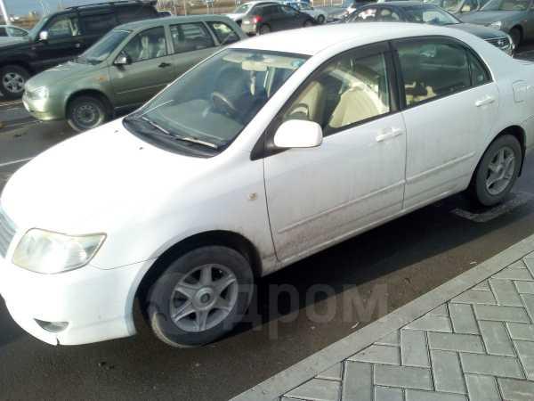 Toyota Corolla, 2005 год, 425 000 руб.