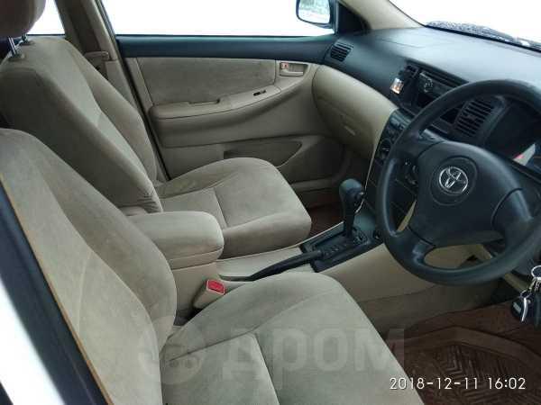 Toyota Corolla Runx, 2002 год, 380 000 руб.