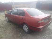 Омск Primera 1996