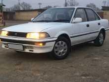 Арсеньев Corolla 1989
