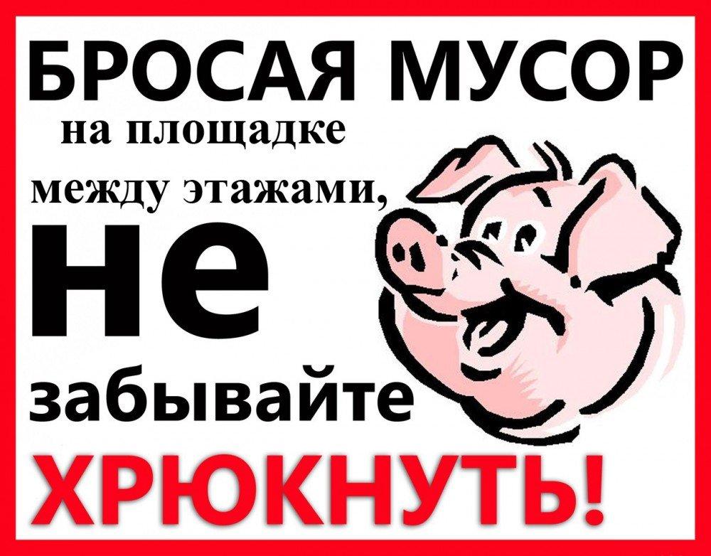 вас картинки про свиней которые мусорят создать сказочный домик