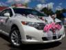 Отзыв о Toyota Venza, 2010