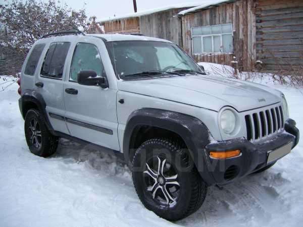 Jeep Liberty, 2002 год, 380 000 руб.