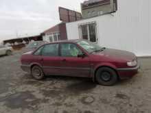 Бердск Passat 1994