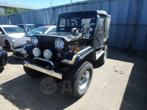 Mitsubishi Jeep, 1995 год, 495 000 руб.